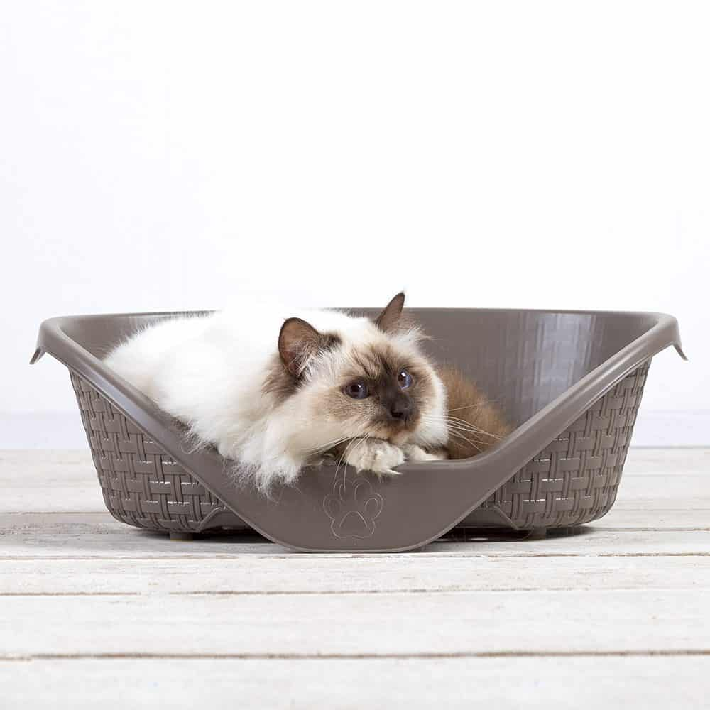 Bama Pet Nido Bed For Dogs and Cats with a cat