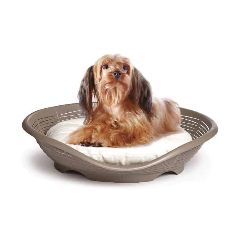 Bama Pet Pasha Bed with Cushion - dogs