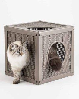 Bama Pet Qublo - with cat