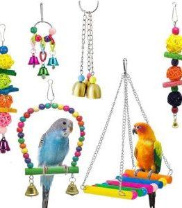 Bird Cage Accessories