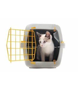 Cat Carrier & Crates