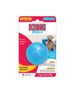 Kong Puppy Ball Toy