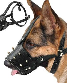 Padded Spiked Leather Dog Traning Muzzle for Large Dogs