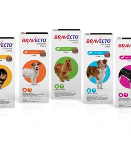Bravecto Flea and tick treatment for dogs, 1 dose all sizes