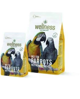 padovan wellness for parrots